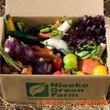 産地直送 オーガニック野菜BOX