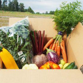 野菜BOX宅配